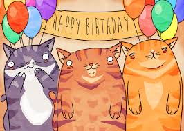 happy birthday cat best images collections hd for gadget windows