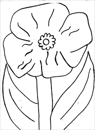 28 poppy template colour 1000 images colouring