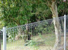 cheap fencing ideas gallery of diy privacy fence ideas cheap with
