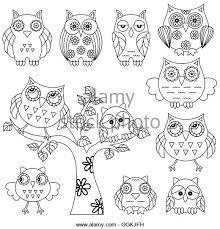 abstract eye owl on black stock photos abstract eye owl on black