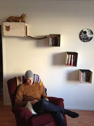 Wall Shelves For Cats Cat Shelves And Hideaway 3 Steps With Pictures