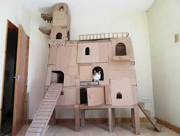 How To Build A Toy Chest From Scratch by Best 25 Cardboard Cat House Ideas On Pinterest House Of Cat