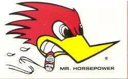 woody woodpecker honda 600rr net