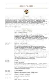 Audio Visual Resume Vice President And General Manager Resume Samples Visualcv