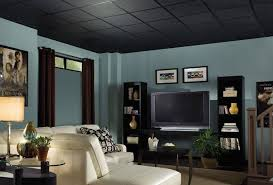 12 inspiration gallery from best black drop ceiling tiles