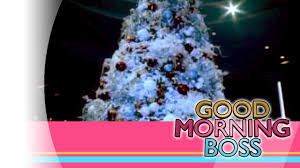 good morning boss etc diamond hotel christmas tree lighting 11