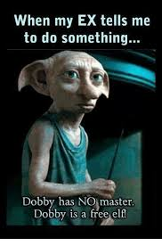 My Ex Meme - when my ex tells me to do something dobby has no master dobby is a