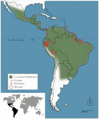 Latin America Map by The Scope Of The Problem Map Of Latin America Showing The Range