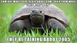 Tortoise Meme - too old for this tortoise meme on imgur