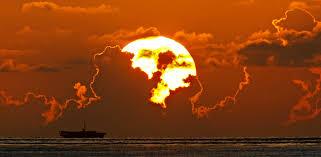 day dawns over palm county u2039 clik hear