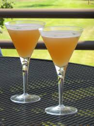martini grapefruit tracy u0027s living cookbook grapefruit jalapeno martini