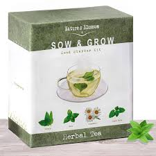 amazon com grow 4 herbal tea plants from seed indoor herb
