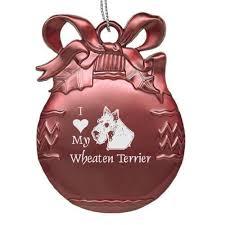 121 best wheaten things images on terriers terrier