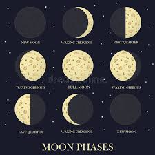 the phases of the moon in the sky stock vector