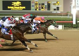 Texas how far can a horse travel in a day images Aqha racing jpg