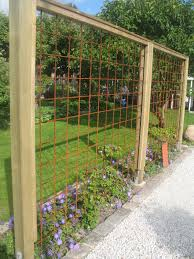 100 wood trellis plans best 25 wire trellis ideas on