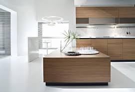 walnut kitchen ideas charming kitchen modern walnut cabinets optimizing home decor ideas