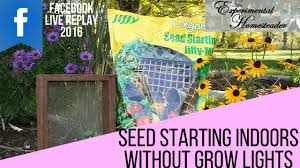seed starting indoors without grow lights facebook live replay