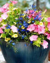 best flower pot ideas all home decorations