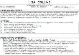 Example Of Resume With No Experience by Sample Of Key Skills In Resume 10114