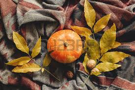 happy or thanksgiving flat lay pumpkin with leaves
