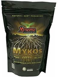 amazon com root naturally azomite rock dust 2 pounds garden
