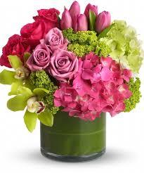 hydrangea arrangements san diego pink hydrangea san diego green hydrangea san diego roses