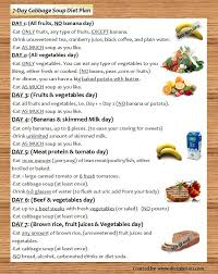 7 day cabbage soup diet browsing for free diet tips you u0027ve come