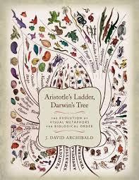 aristotle s ladder darwin s tree the evolution of visual