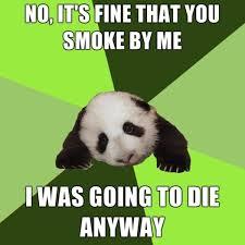 Passive Aggressive Meme - passive aggressive panda image gallery know your meme