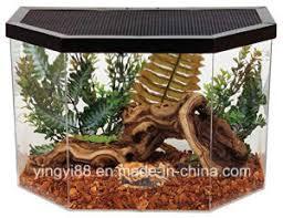 china high quality acrylic terrarium reptile box with sgs