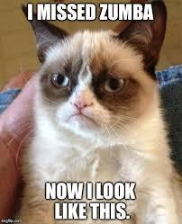 Zumba Meme - grumpy cat meme imgflip