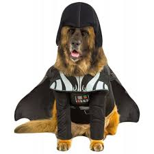 Halloween Costume Darth Vader 33 Pets Halloween Costumes Flaunt Unique Halloween Style