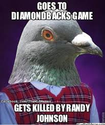 Crazy Bird Meme - mlb memes on twitter who remembers when randy johnson killed a