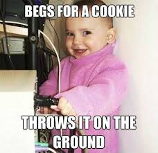 Funny Baby Meme - funny baby wants a cookie meme