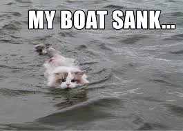 Cat Meme Boat - cat takes its boat out while on catnip learning a valuable lesson
