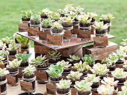 flower pot favors wedding ideas 20 extraordinary plant seed wedding favors image