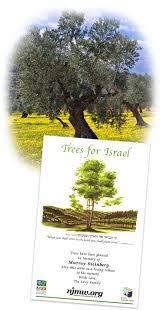 plant trees through national fund