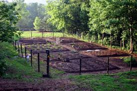 vegetable garden design diy bean trellis gardenista