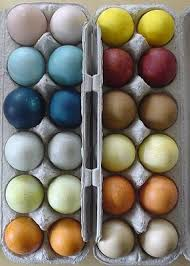 naturally dyed easter eggs crafts pinterest easter egg and