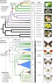 butterfly plants bureau of missouri