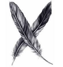 symbol meaning of seeing a black feather transition or big