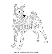 bullterrier dog coloring book raster illustration stock