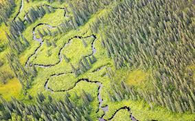 Denali National Park Map Denali National Park Celebrates 100 Years Travel Leisure