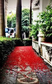 Flower Garden Hanoi by 155 Best Hanoi Die Hauptstadt Von Vietnam Images On Pinterest