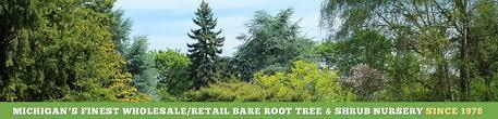 wholesale shrub bare root tree nursery in michigan cold