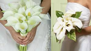 wedding flowers meaning wedding flowers and their meanings with pictures