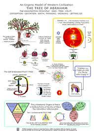 meru foundation research an organic model of civilization the tree