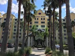 Comfort Suites Maingate East Kissimmee Florida A Cama Parece Confortável Não Picture Of Comfort Suites