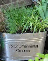 try a container of ornamental grasses cozy house
